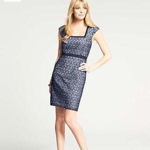 Ann Taylor navy blue eyelet Lace sheath dress sz 0